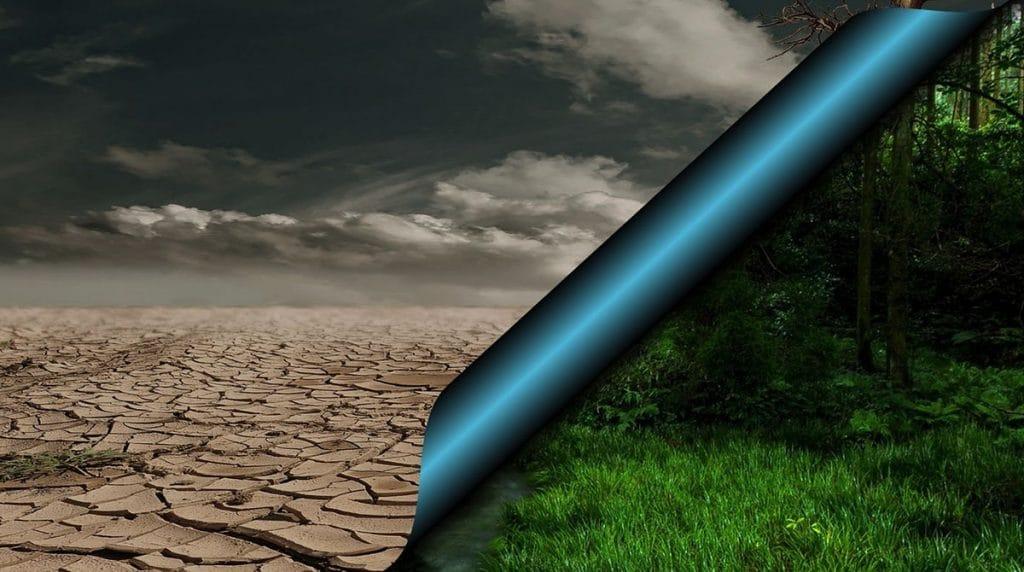 hållbarhet miljö